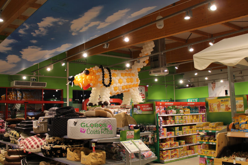 Giant balloon dog decoration for a pet shop in Hostpital.